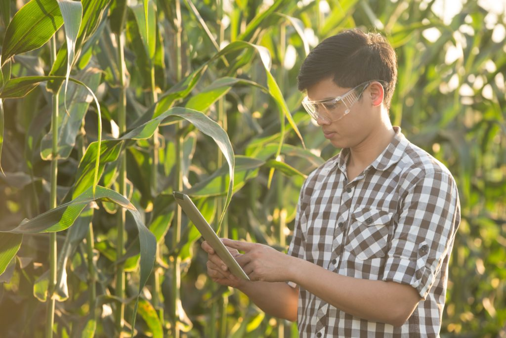 Farmer researching plant